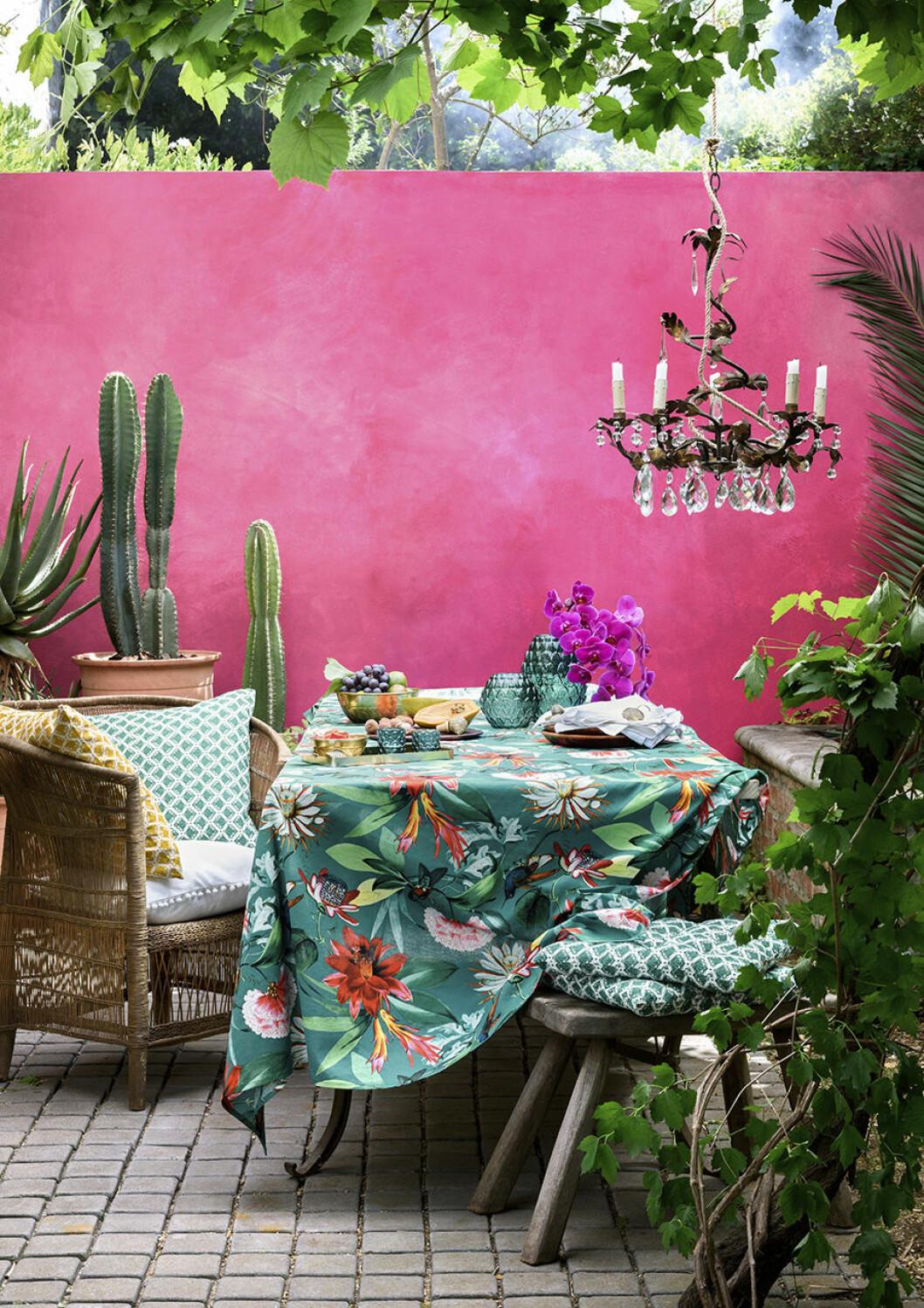Skapa tropisk känsla på uteplatsen med växter, mönster och färg
