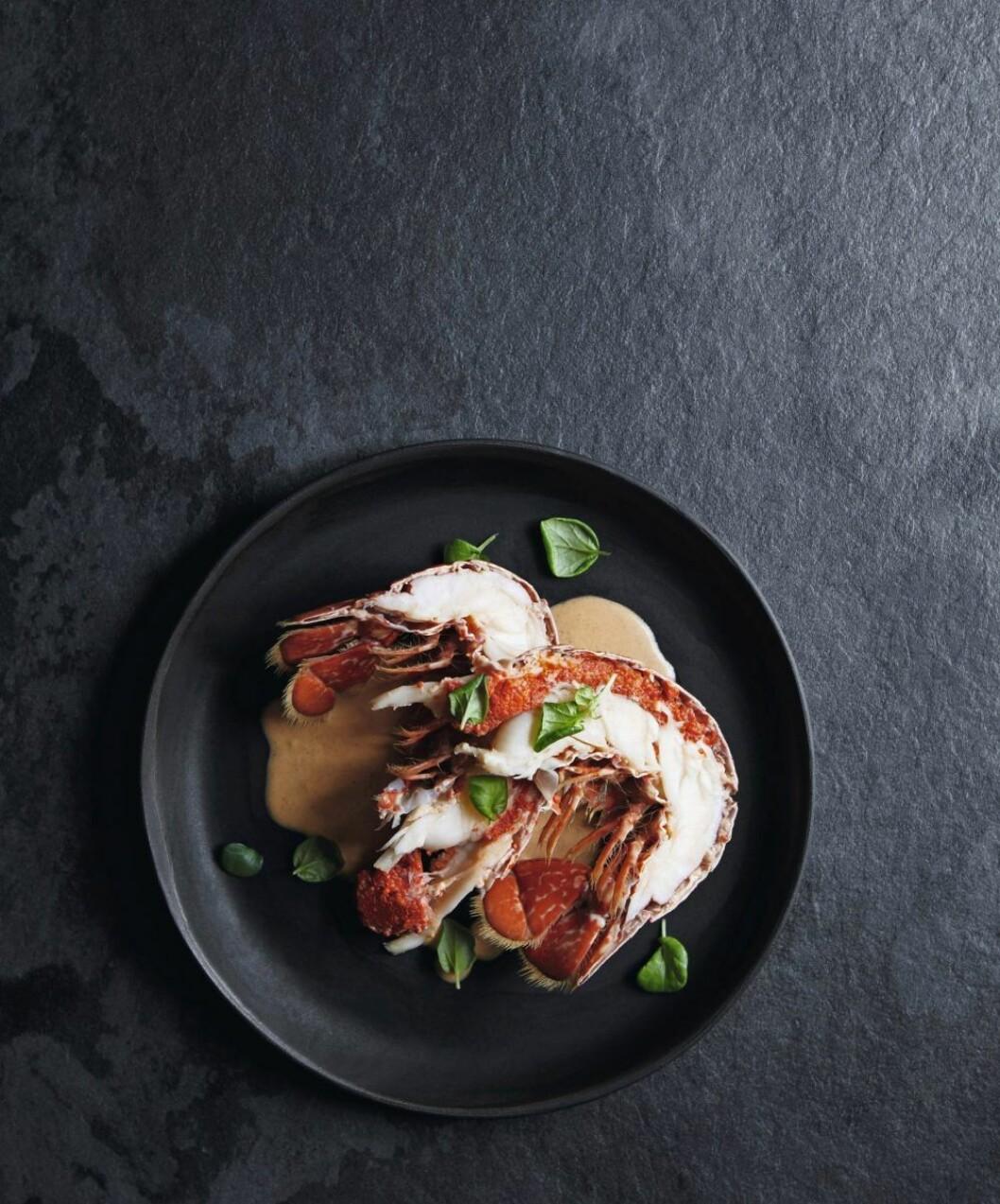 Recept hummer i röd currysås