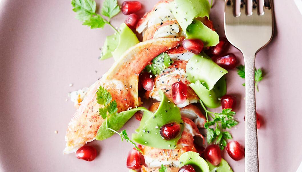 Hummercarpaccio med avokado och granatäpple.