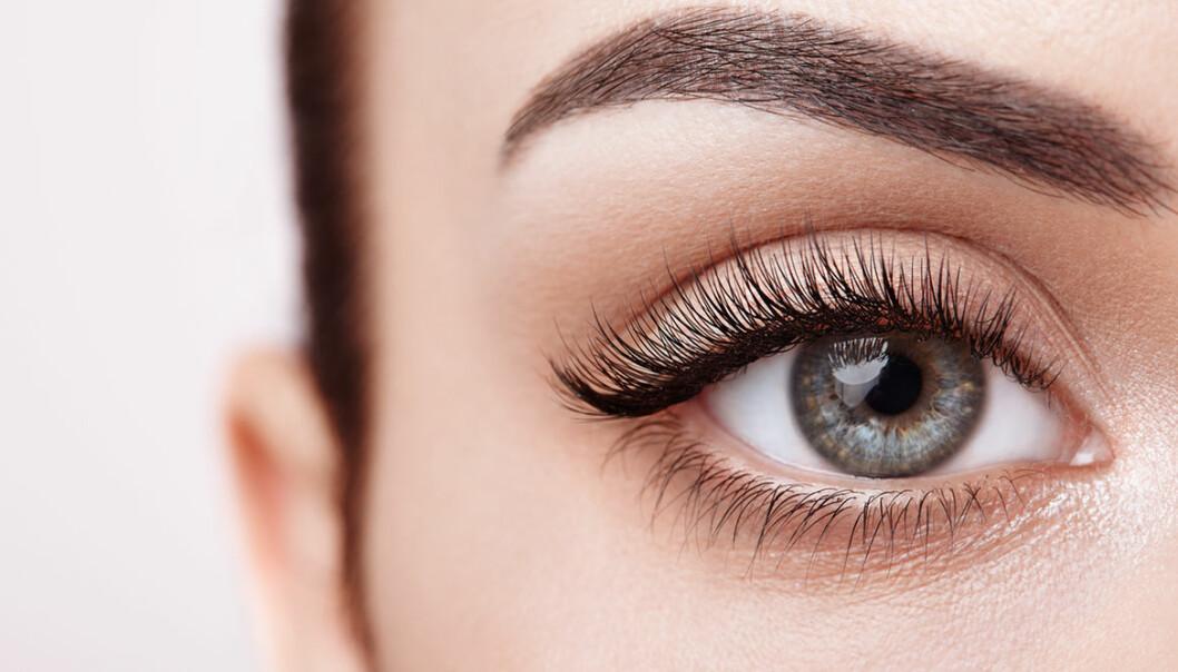 Få längre och fylligare ögonfransar