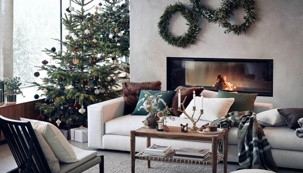 Hur tidigt kan man köpa julgranen så att den håller till jul?