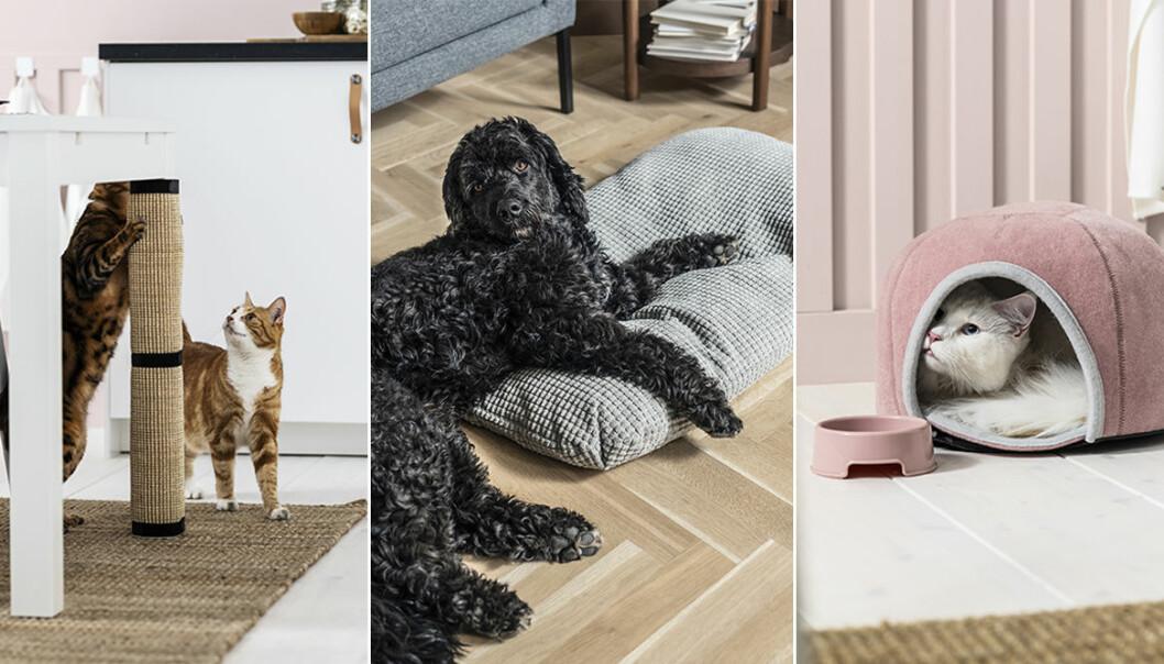 Ikeas husdjurskollektion Lurvig för katter och hundar