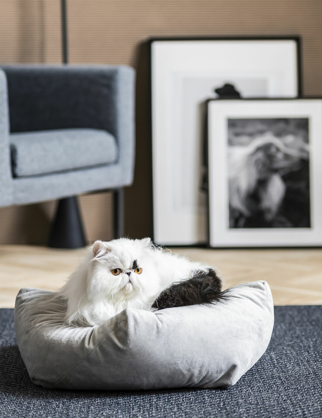 kattbädd från ikeas kollektion lurvig