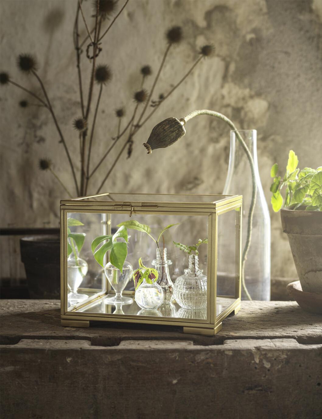 Förvaringask i glas och guld från Ikea