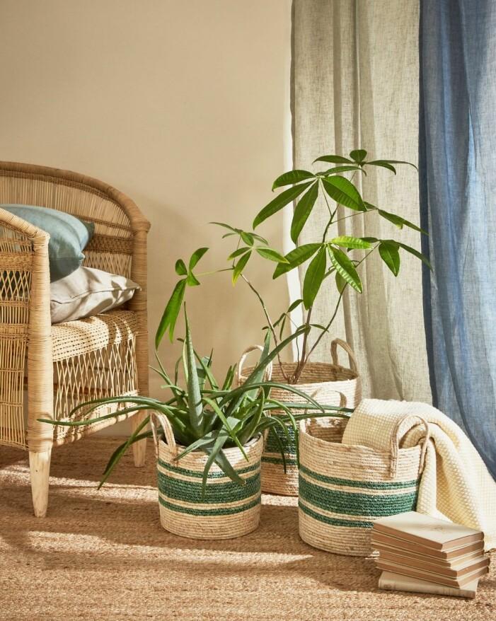 Skapa en grön oas med trä och naturmaterial