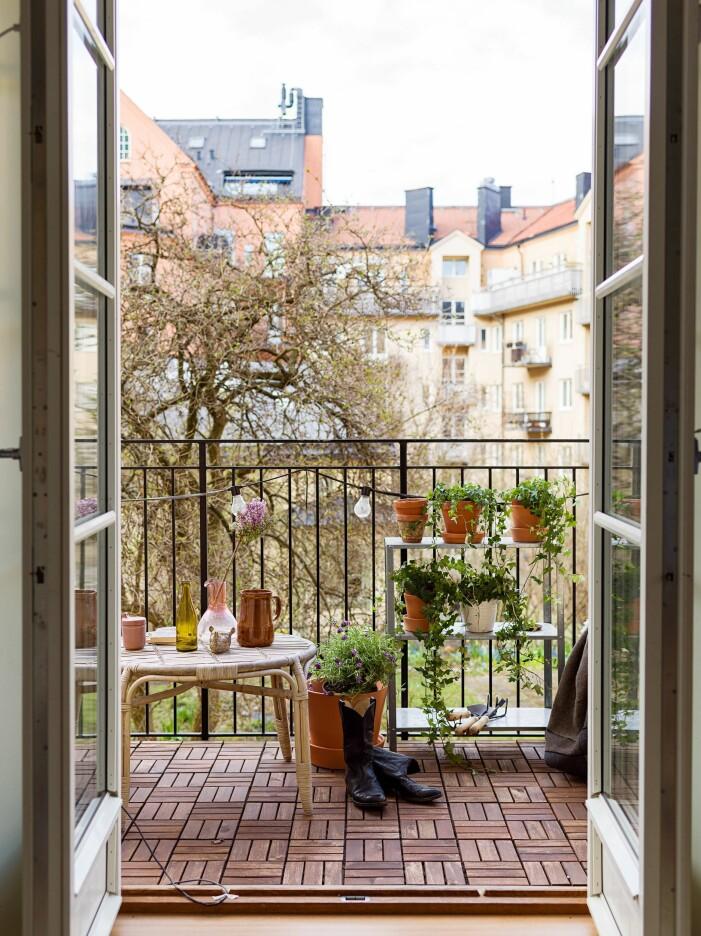 Så skapar du en stilren balkong med gröna växter