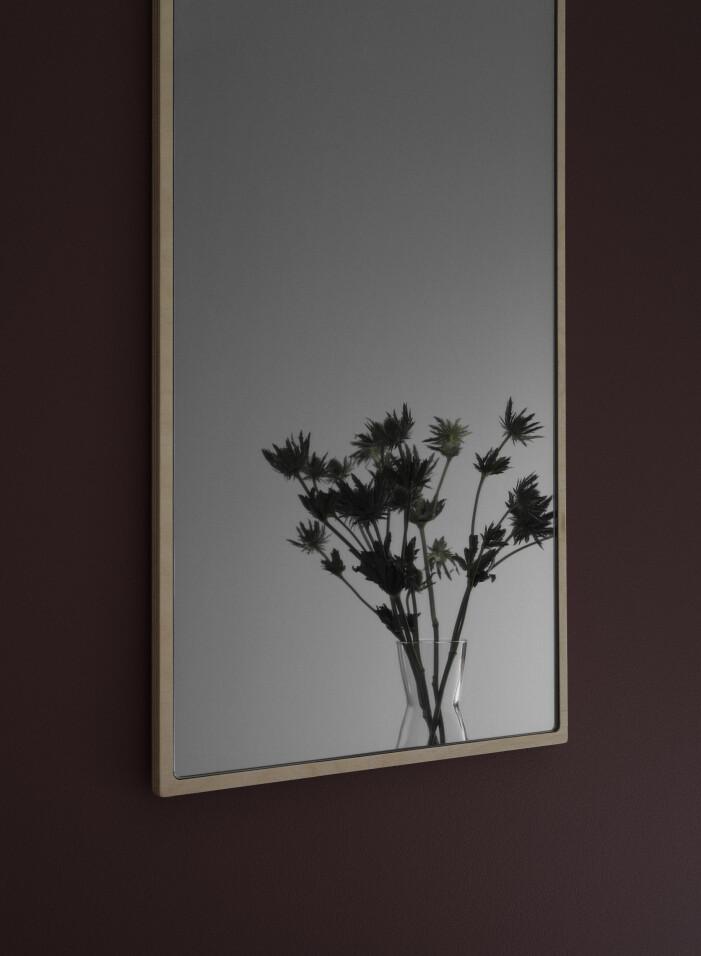 Inred med speglar i hallen