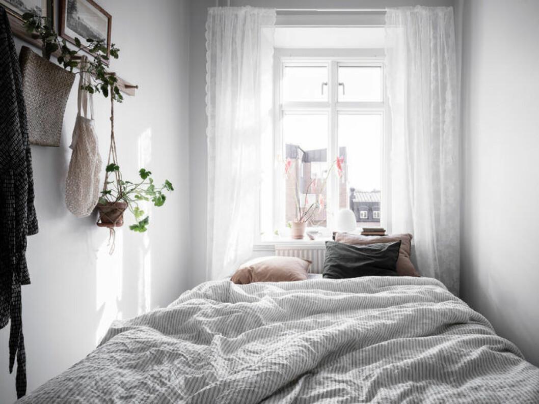 Somrig möblering med sängen vid fönstret