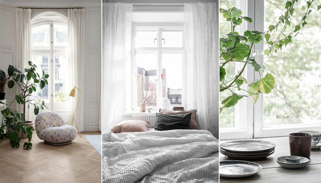 Fina sätt att inreda vid fönster på våren och sommaren