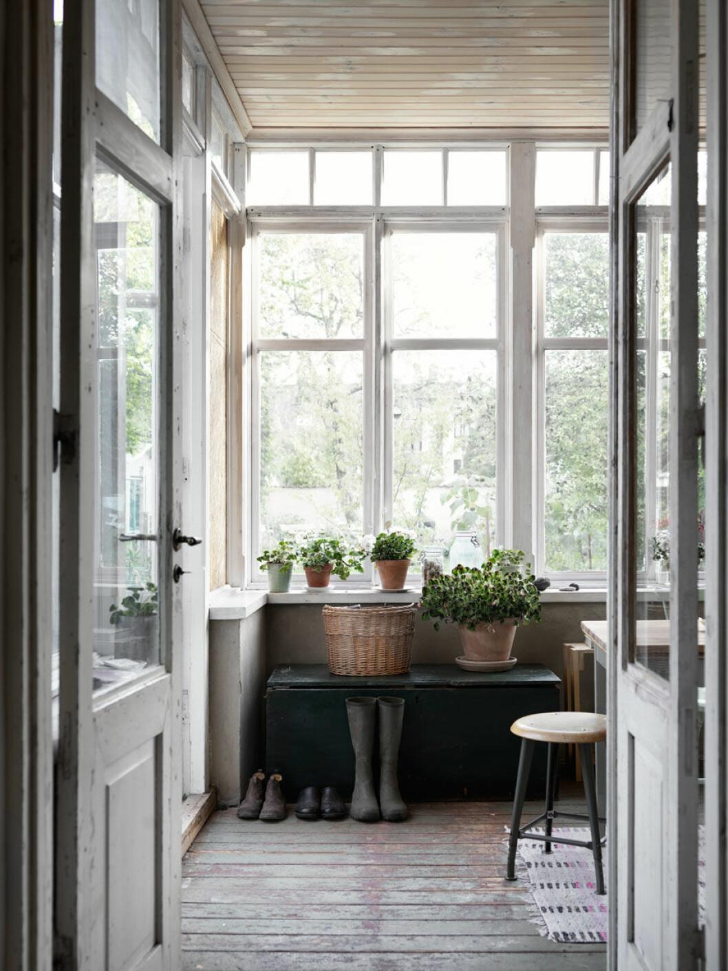 Fönster som vätter ut mot trädgården