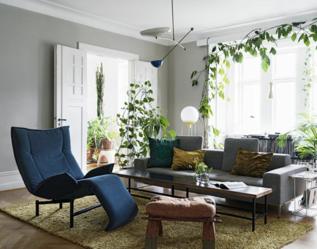 vardagsrum med soffa och fåtölj och stora gröna växter