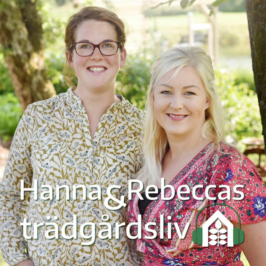 Hanna & Rebeccas trädgårdsliv