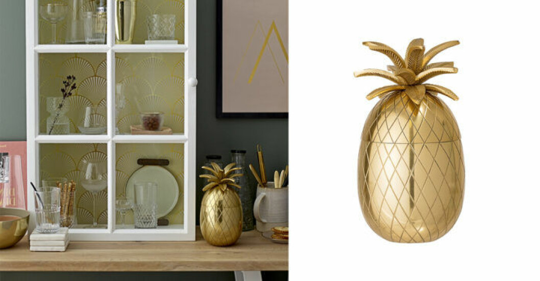 Ishink Ananas