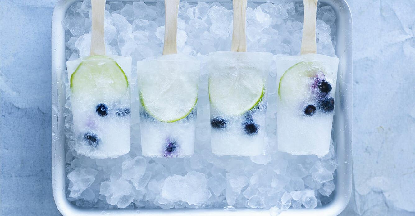 Recept på isig blåbärs-kick