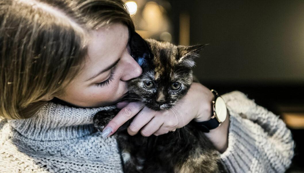 Elina Thorsell gosar med katt