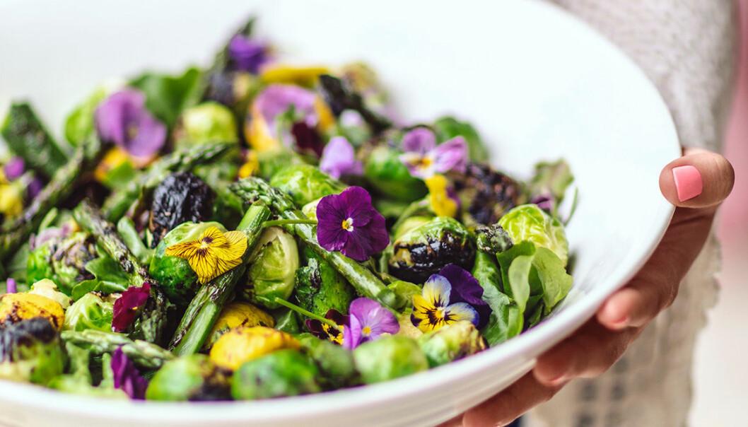 Jessica Frejs grillade sparrissallad med ätbara blommor.