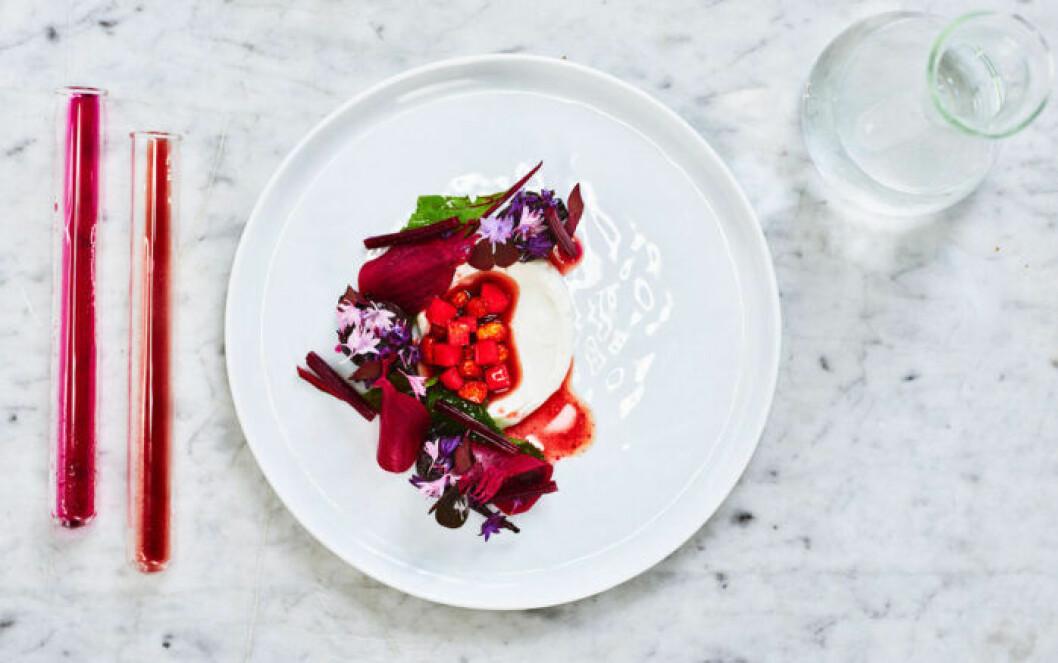 Jimmi Erikssons picklade rödbeta bjuder på nya varianter av syra.