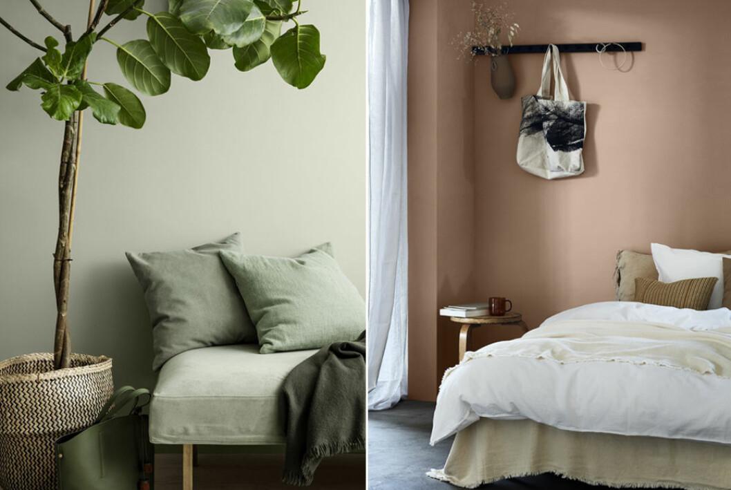 Grön och persikofägad vägg – en fin färgkombination