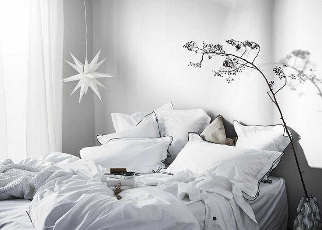 Moraviastjärnan i vitt hos Jotex – snyggt i jul och i vinter.