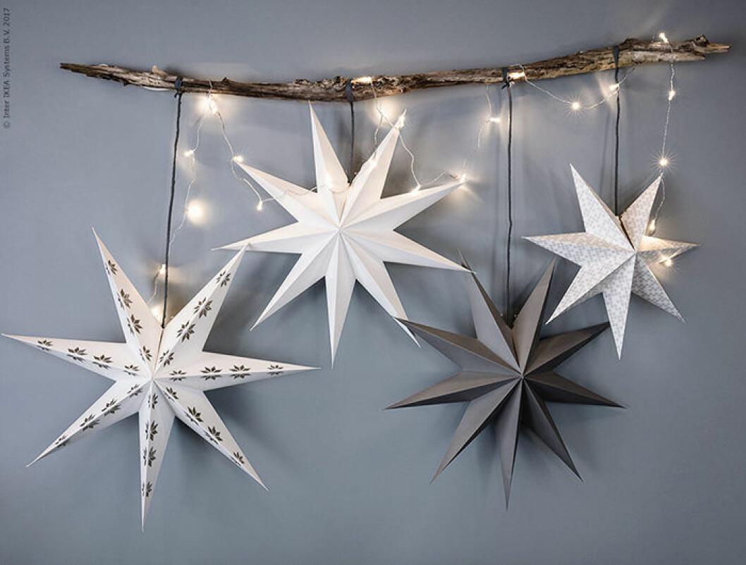 julstjärnor är fina även till nyårsfesten - här hos Ikea
