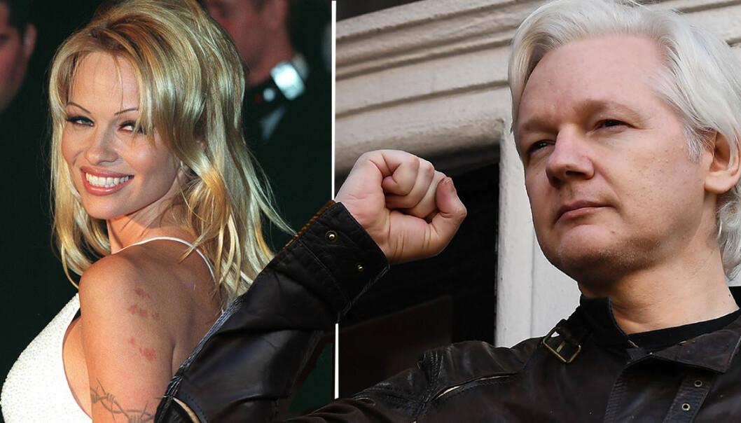 Våldtäktsanklagade Julian Assange och Pamela Anderson.