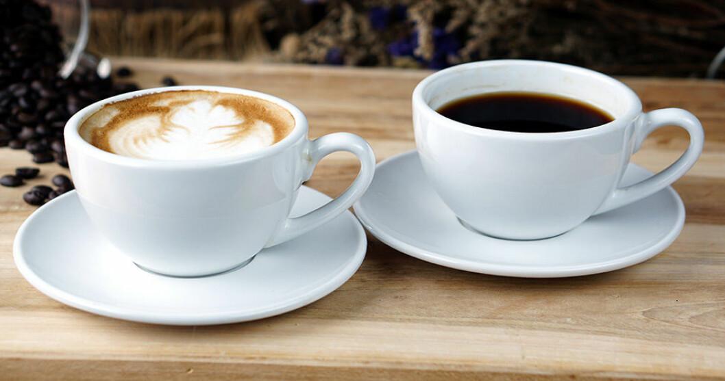 Vet du skillnaden mellan olika sorters kaffe?