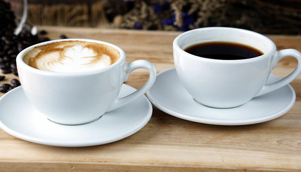 Vet du skillnaden på olika sorters kaffe?