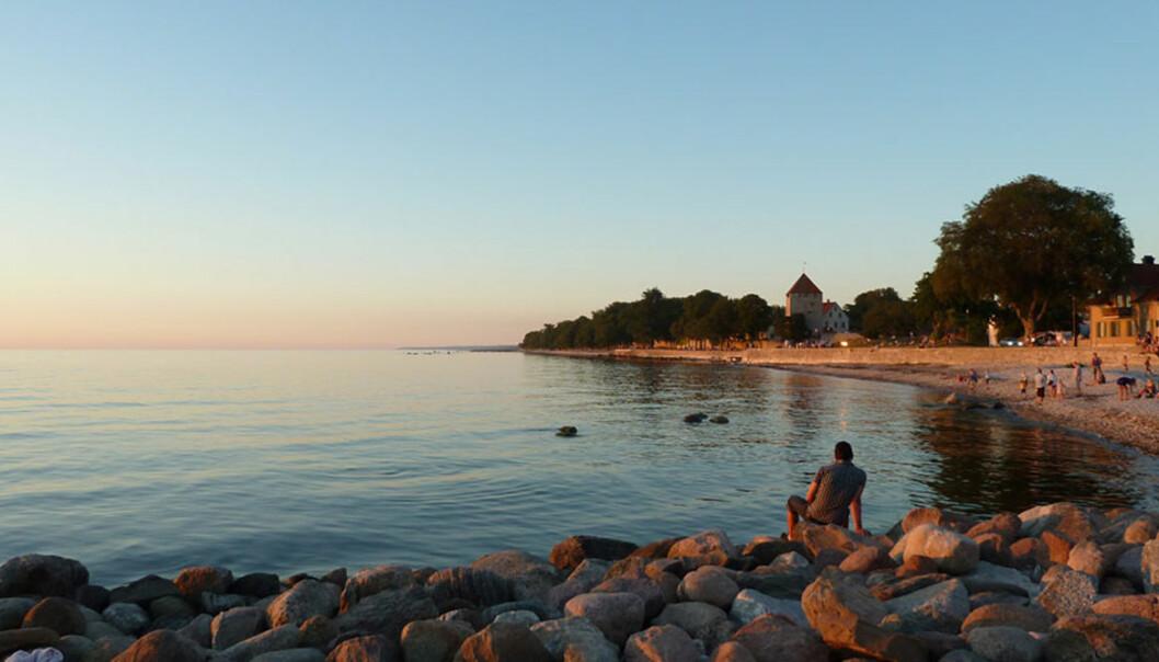 Stränder och badplatser du inte fåt missa på Gotland