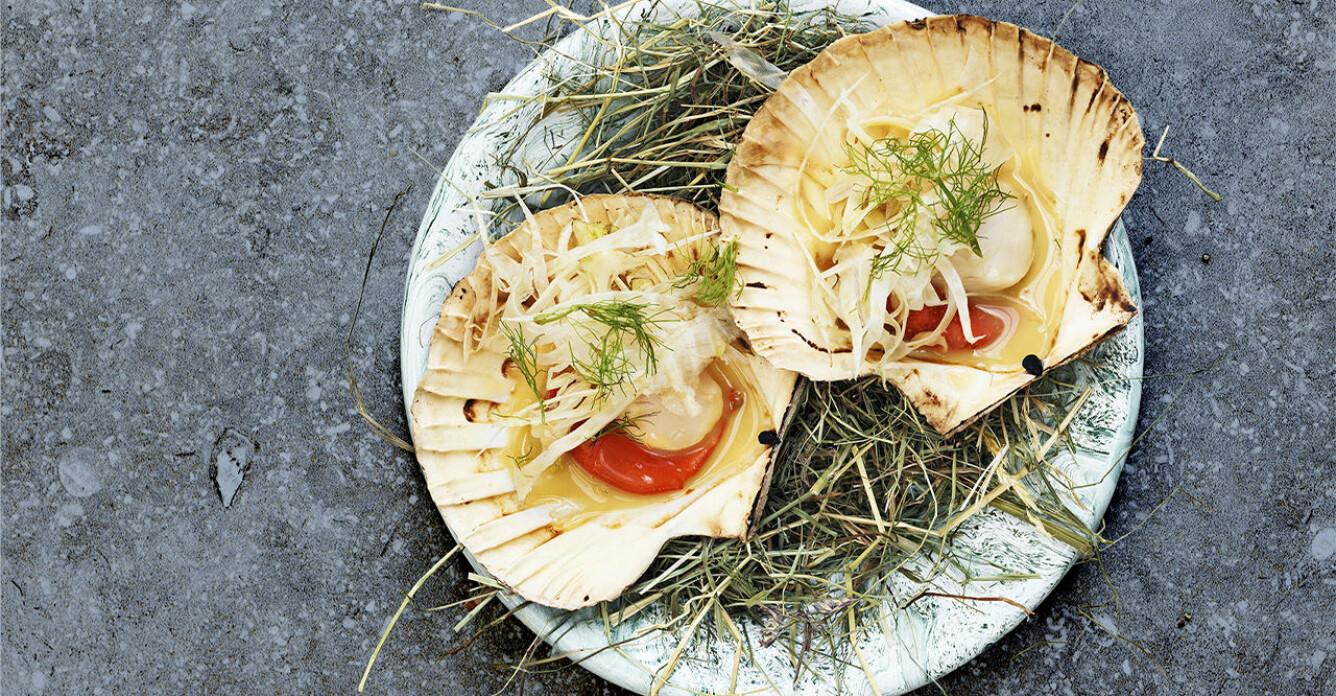 Recept på kammusslor med krispig fänkål och beurre blanc