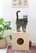DIY hus för katter