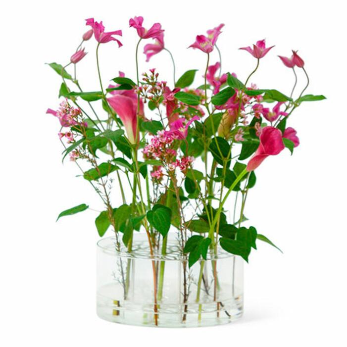 Vas Äng från Klong