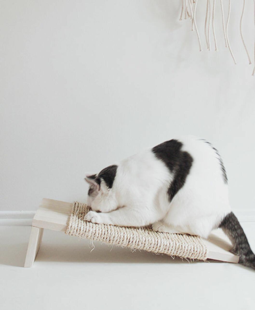 DIY klösbräda katt