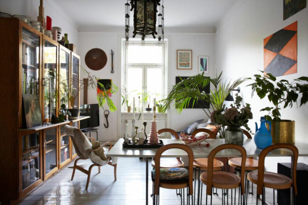 Vardagsrum med växter, belysning och trädetaljer