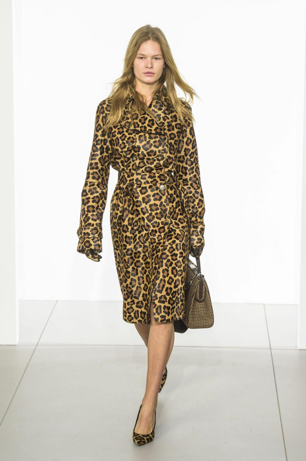 Leopard på basplagg är en het trend och ett perfekt mönster som piggar upp en vanlig baslook.