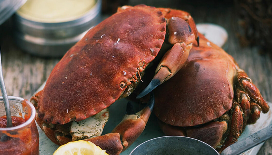Snabb krabba med tre goda såser.