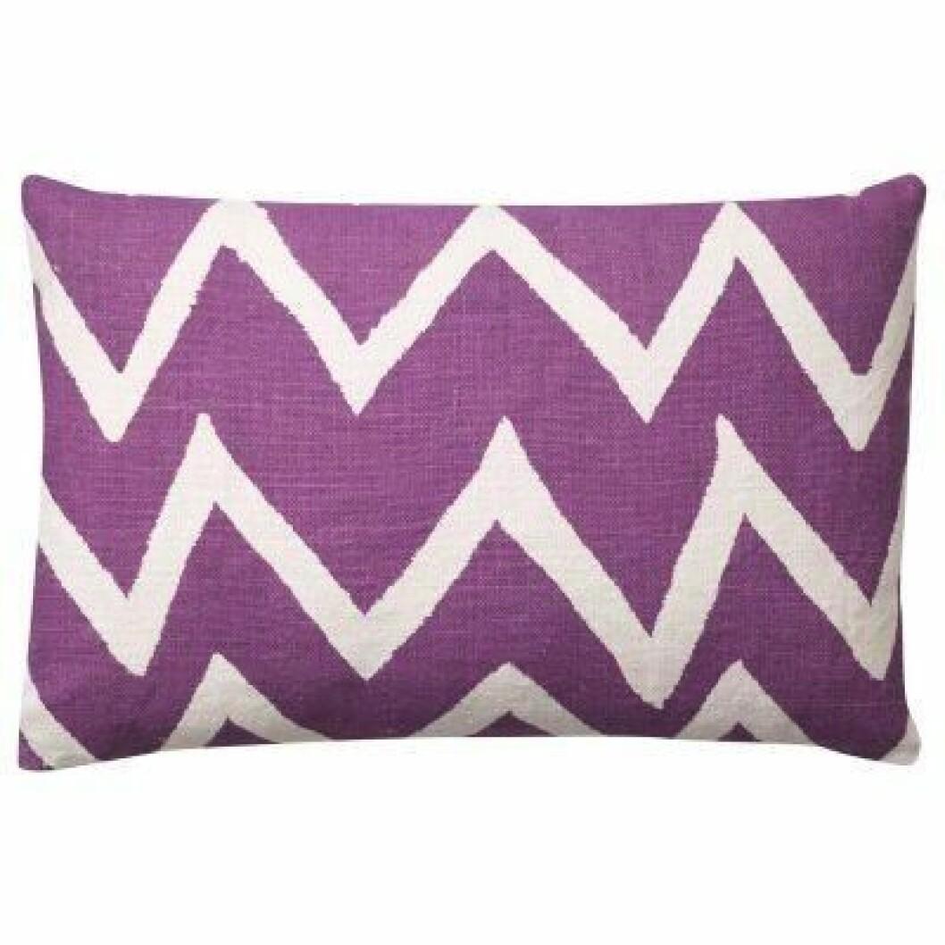 kudde chhatwal och jonsson lila ultraviolet