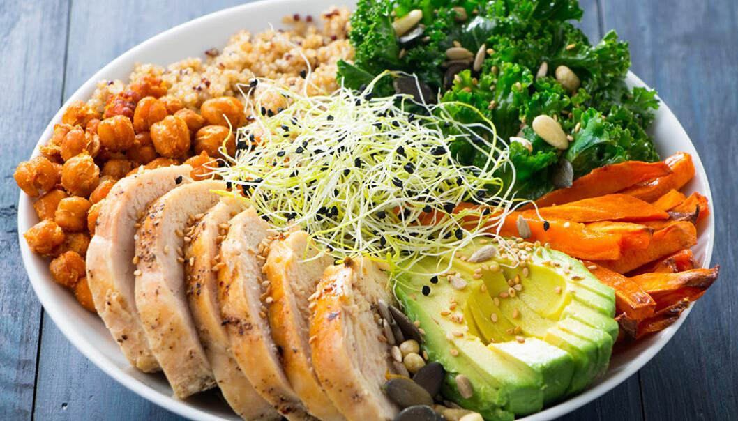 Kyckling, avokado, kikärtor, grönkål, sötpotatis och quinoa.