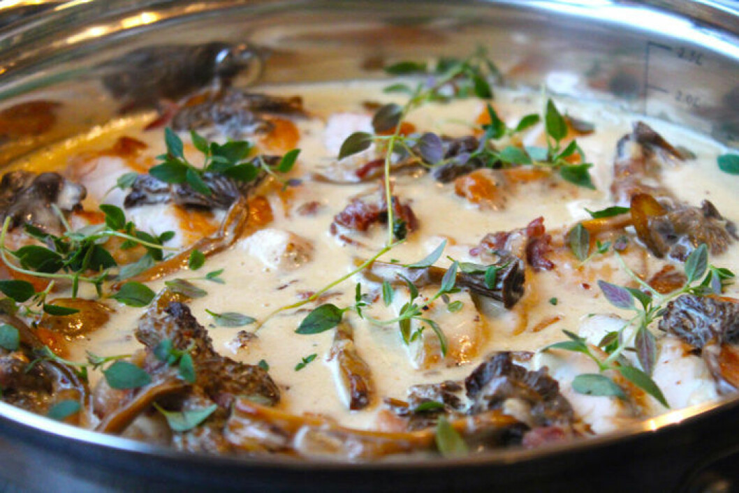 Kycklinggryta med kantareller och mandelpotatis.