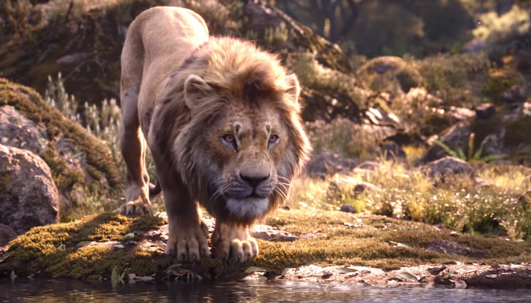Simba i otecknade Lejonkungen.