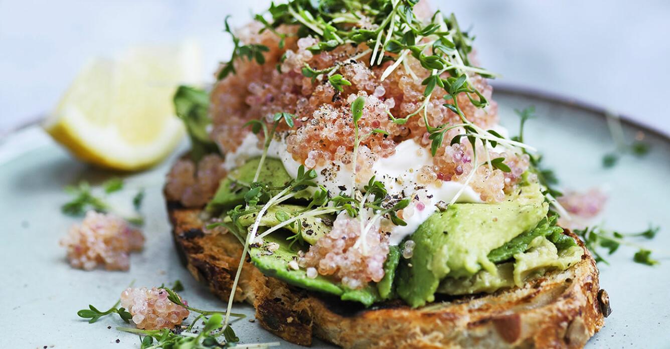 Recept på levain med avokado och stenbitsrom