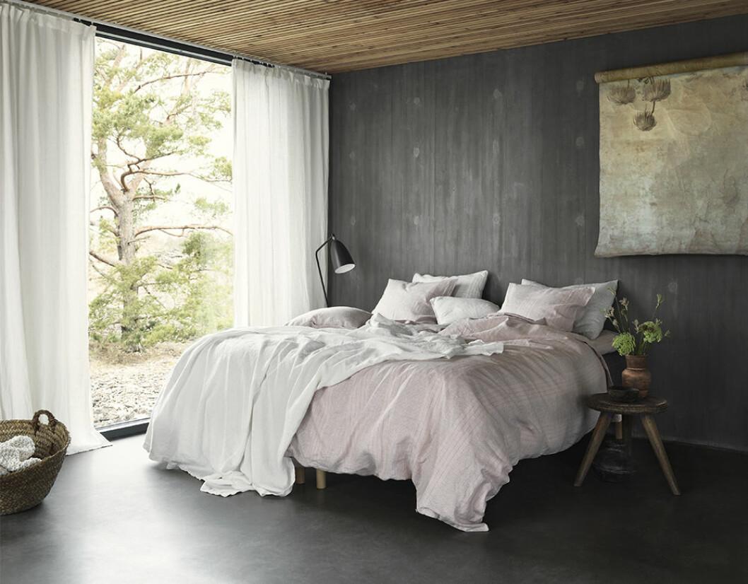 rosa linne i sovrum hos linum