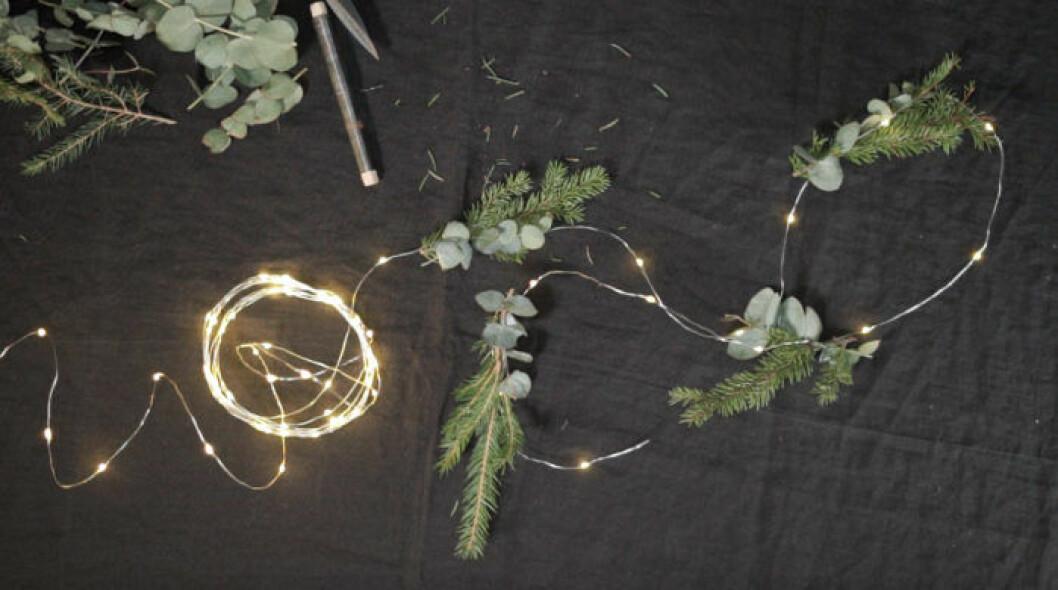 Ljusslinga med granris och eukalyptus