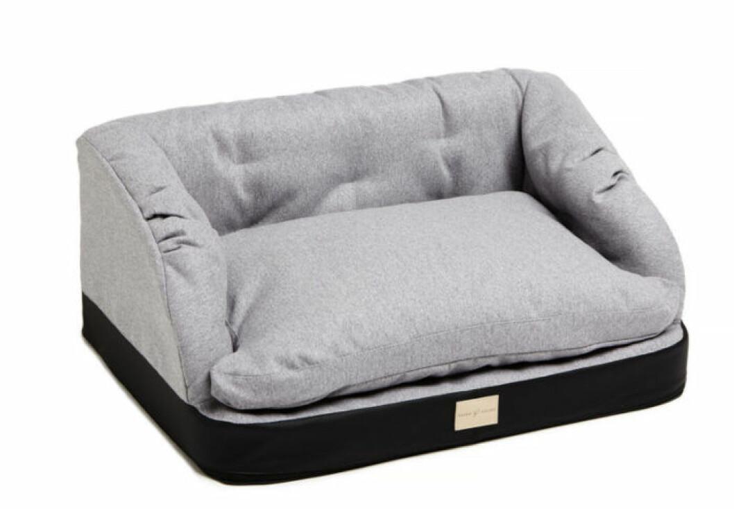 Soffa för hund och katt