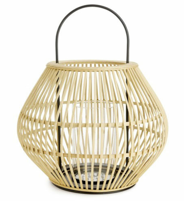 ljuslykta bambu