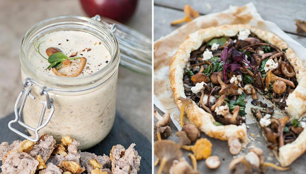 Lyxiga och lättlagade recept med svamp.
