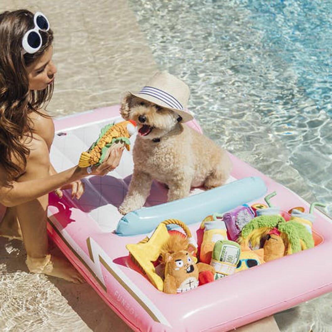 Kvinna med en hund på badmadrass.