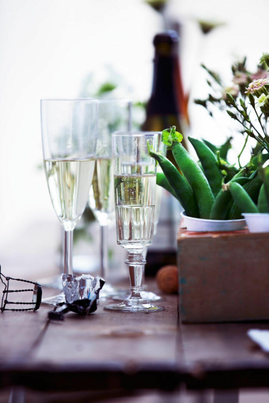 Svenskt champagne, mat- och drycktrender 2020