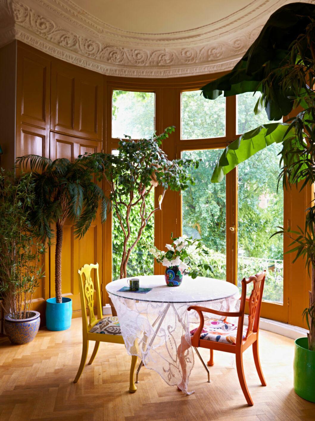 Underbar inomhusdjungel hemma hos designern Matthew Williamson i London