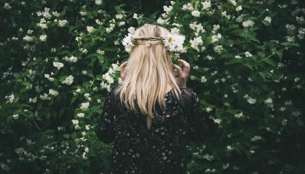 Blommor midsommar