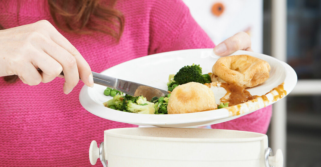 Släng inte mat i onödan! Foto: IBL